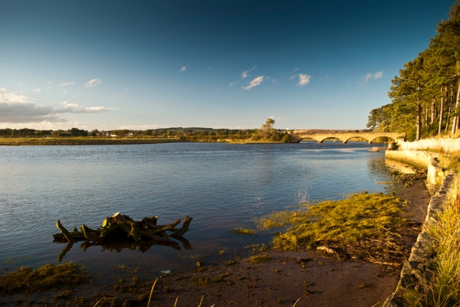 Alnmouth estuary bathed in evening sunshine