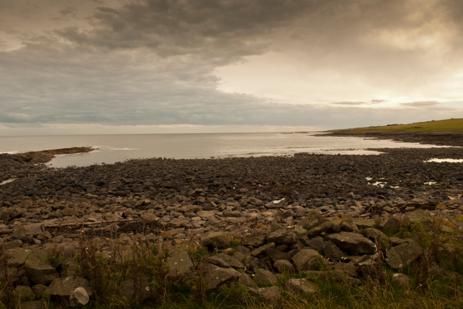 The coastline near Craster